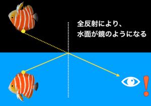 全反射の図