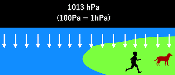 1013hPa