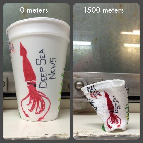 水圧で潰れたカップ