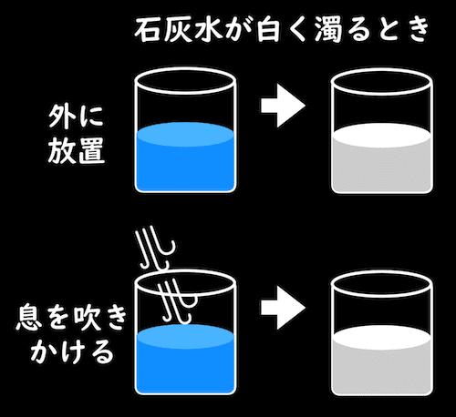 二酸化炭素により、石灰水が白く濁る