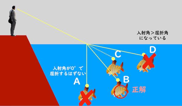 光の屈折と水中の魚