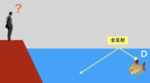 全反射により見えない魚