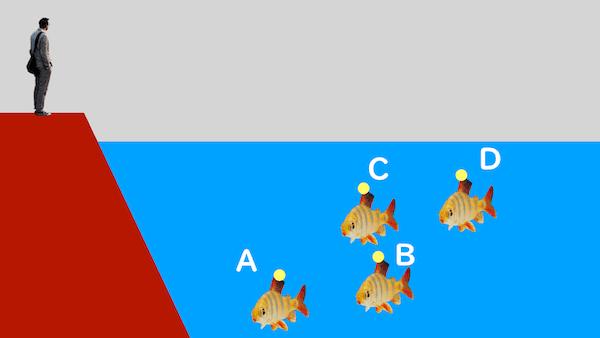 水中の魚と屈折