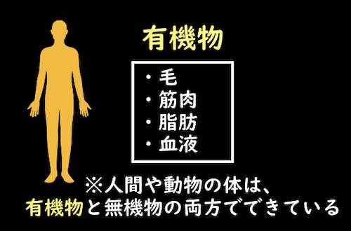 人体を構成する有機物