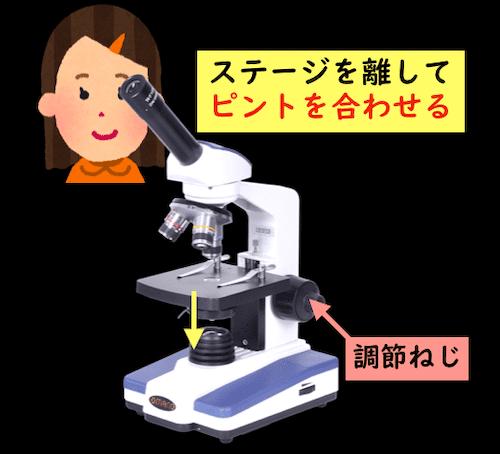 顕微鏡の使い方。ステージを離してピントをあわせる