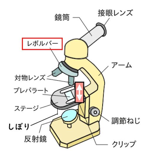 顕微鏡とレボルバー