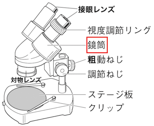 双眼実体顕微鏡の鏡筒