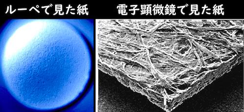 ルーペと電子顕微鏡それぞれで見た紙